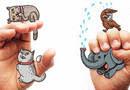 Легкий способ выучить язык жестов по иллюстрациям