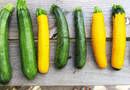 Кабачки — идеальный диетический продукт