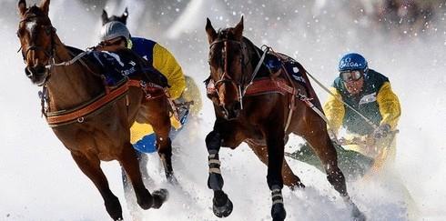 6 зимних видов спорта, которые пока не стали олимпийскими