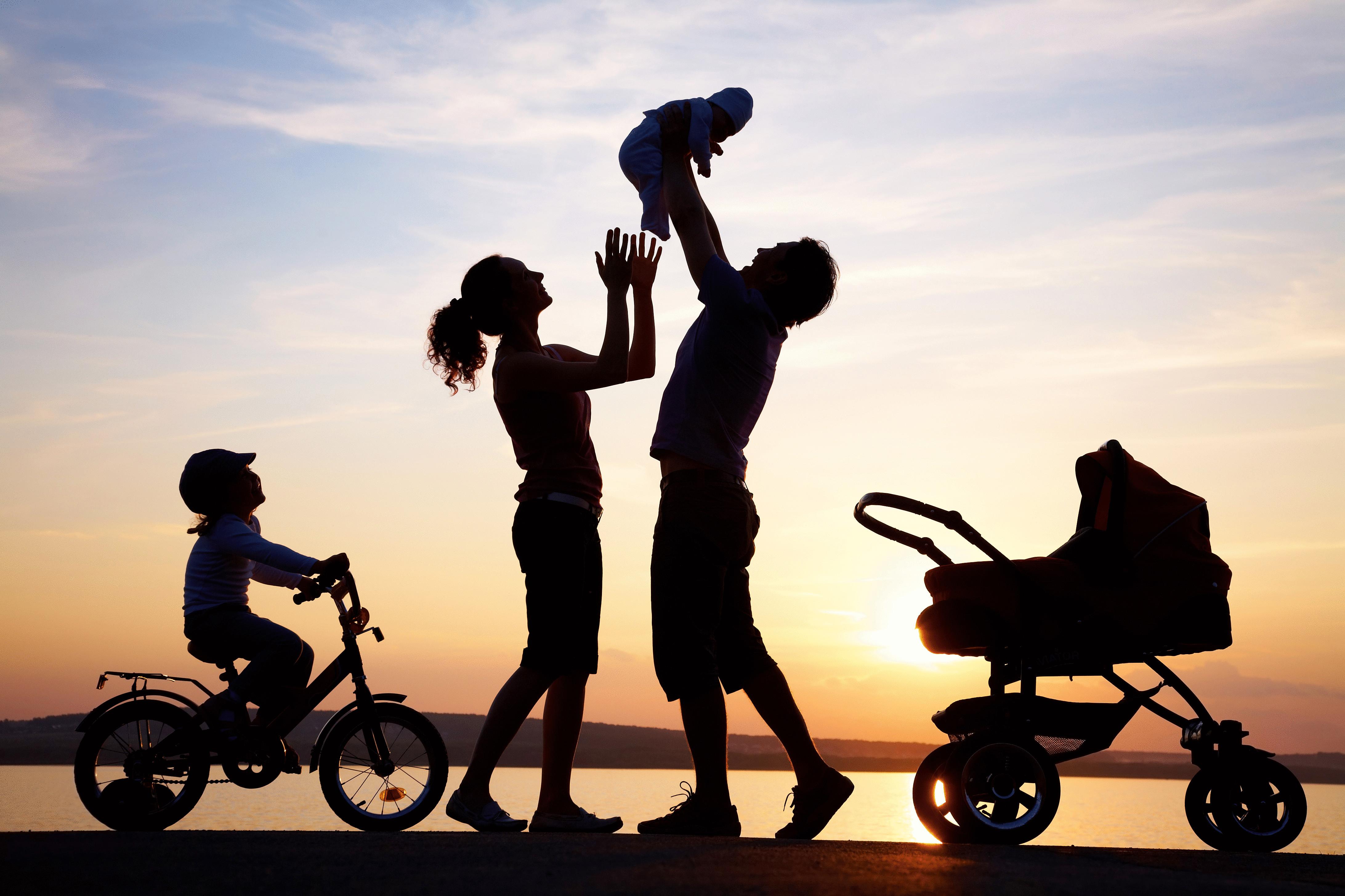 статистика картинка семья это жизнь именно для