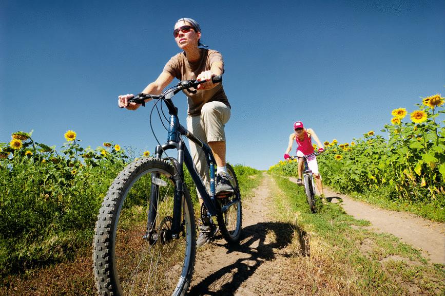 Как влияет велосипед на потенцию