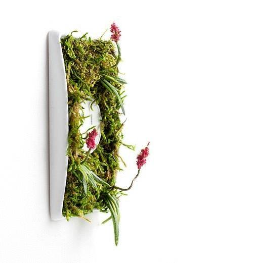 Экологичный дизайн розеток