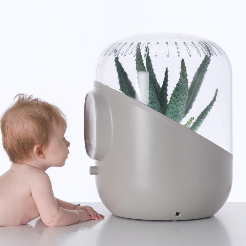 средство для очистки воздуха