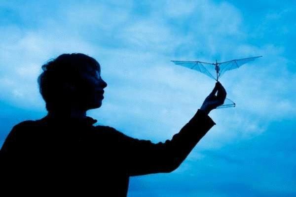 Складываемые крылья защитят беспилотники от столкновений