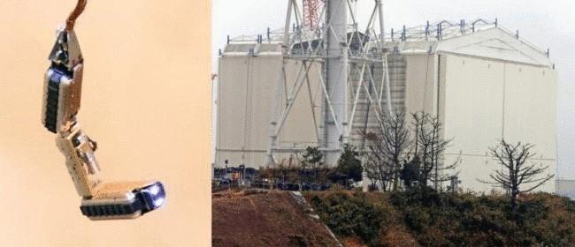 Японский робот «умер» после трех часов пребывания в ядерном реакторе
