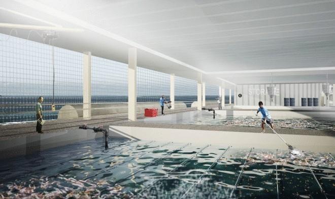 Испанские архитекторы представили проект плавающей фермы на солнечных батареях (3 фото)