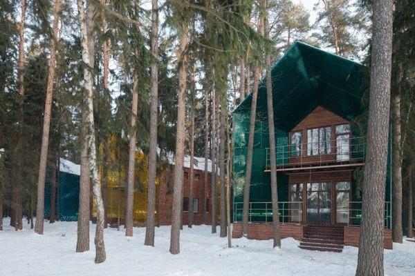 Разноцветные дома в подмосковном лесу