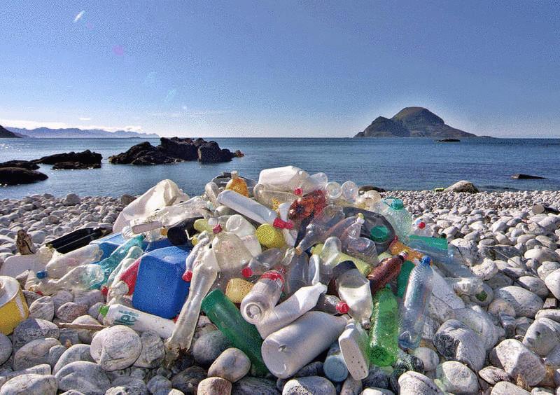 Вся правда о пластике, который мы едим