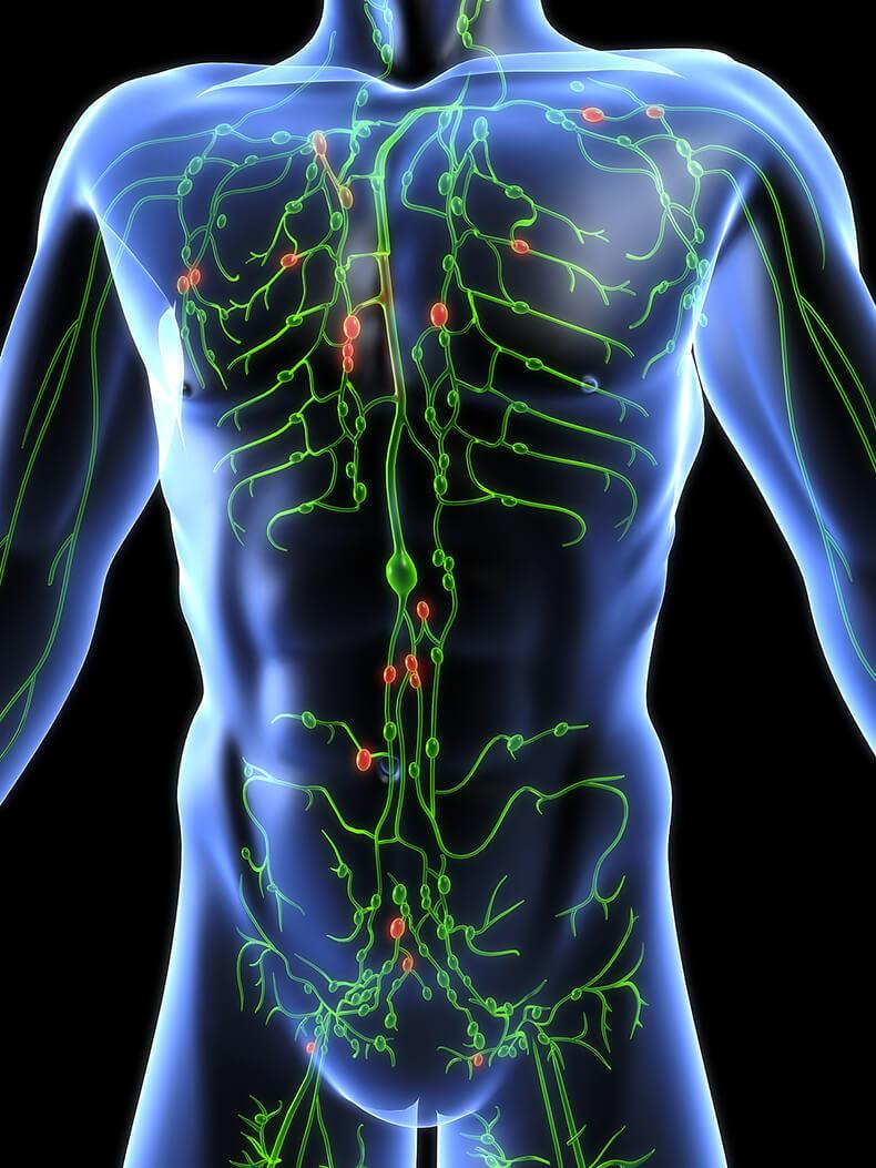 как реагируют лимфососуды при сифилисе