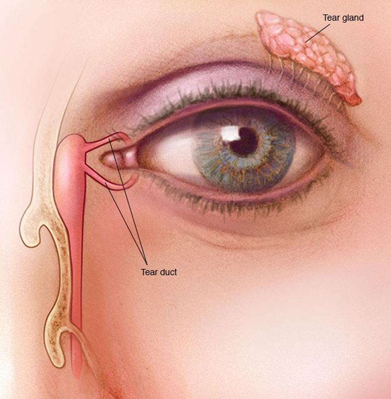 Двоение в глазах: Причины и методы лечения | Новости ...