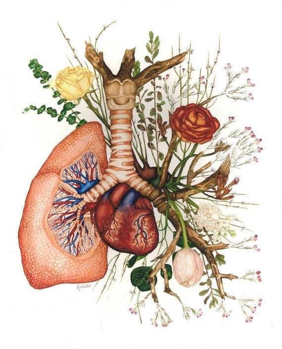 16 восточных секретов здоровья