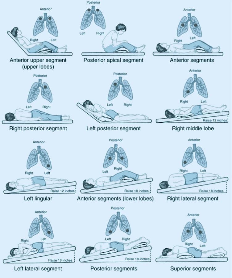 Очищение легких: Золотая подборка рецептов