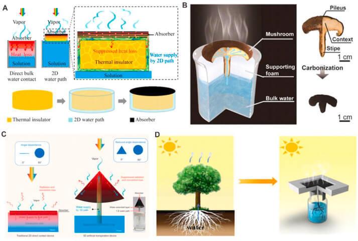 Прямое солнечное производство пара
