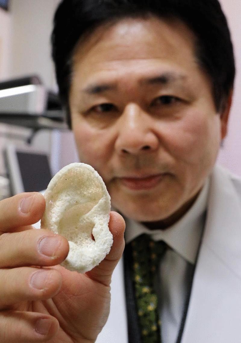 Японскими учеными создан новый универсальный 3D-биопринтер